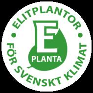 E-planta_stamp