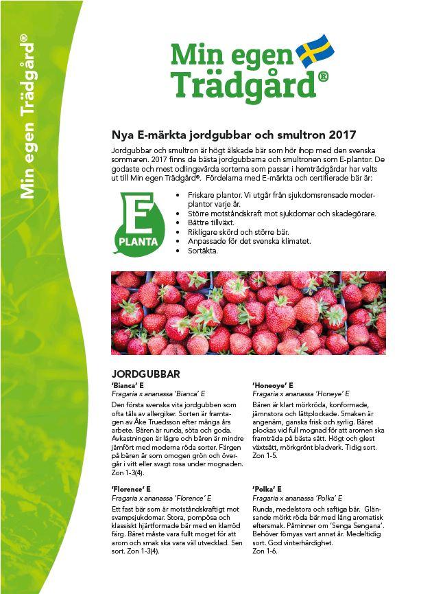 Produktblad MeT jordgubbar och smultron