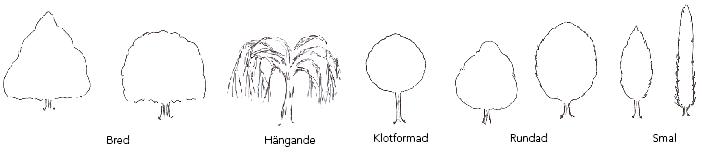 Kronform träd