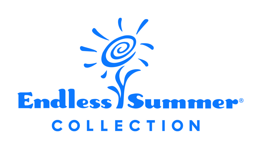 ES logo Blue 4C