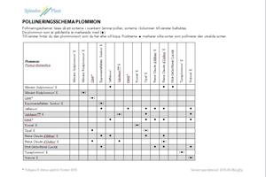 Pollineringsschema-Plommon