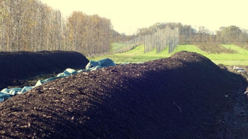 1-Kompostlimpor Splendor Plant