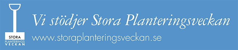 spv-banner-800-px